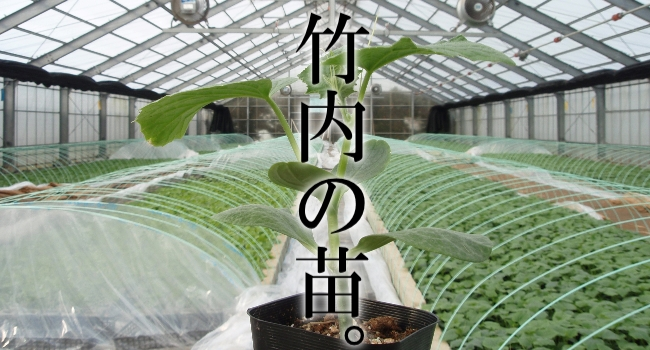 竹内園芸トップ画像